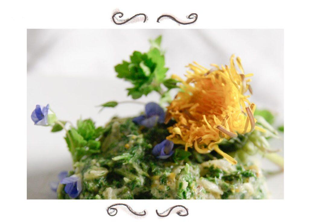 wild herbs dandelion speedwell yarrow