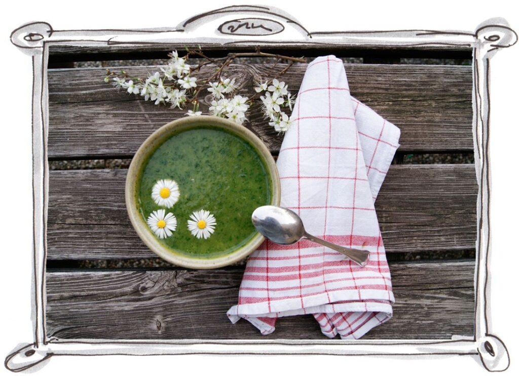Bärlauch Suppe mit Löwenzahn